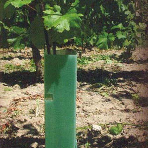 Tubus na ochranu viniča